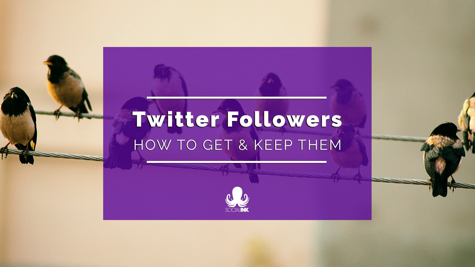 How to Get More Followers on Twitter, and Keep Them